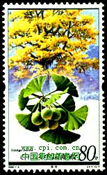Ginkgo stamp China