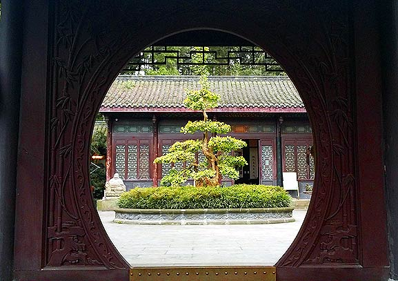 Jinjiang Bonsai garden (photo: James Wilkins)
