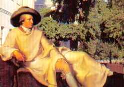 Goethe and the Ginkgo in Weimar