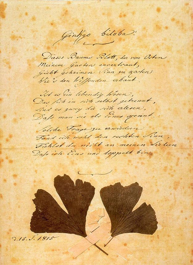 Goethe's poem Ginkgo biloba