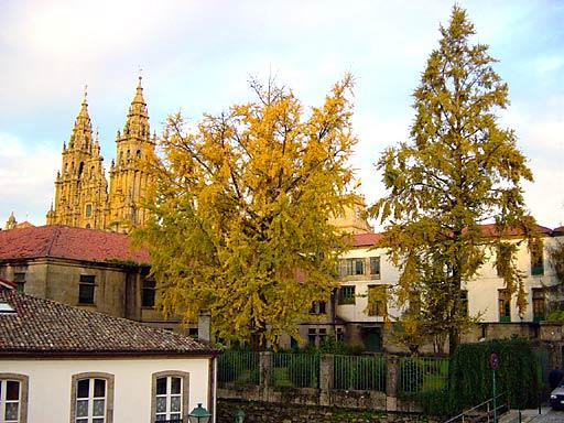 Santiago del Compostela (photo Gomez)