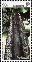 Stamp Singapore Ginkgo